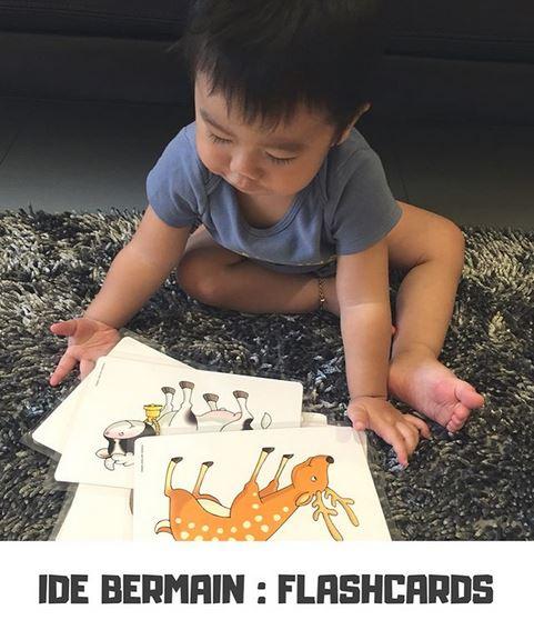 Ide Bermain Toddler : FLASHCARDS