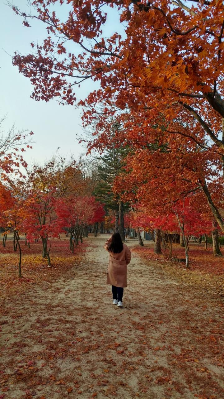 South Korea in Autumn : Day 2